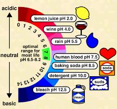 Syrer - Baser - Glykoler - Alkoholer